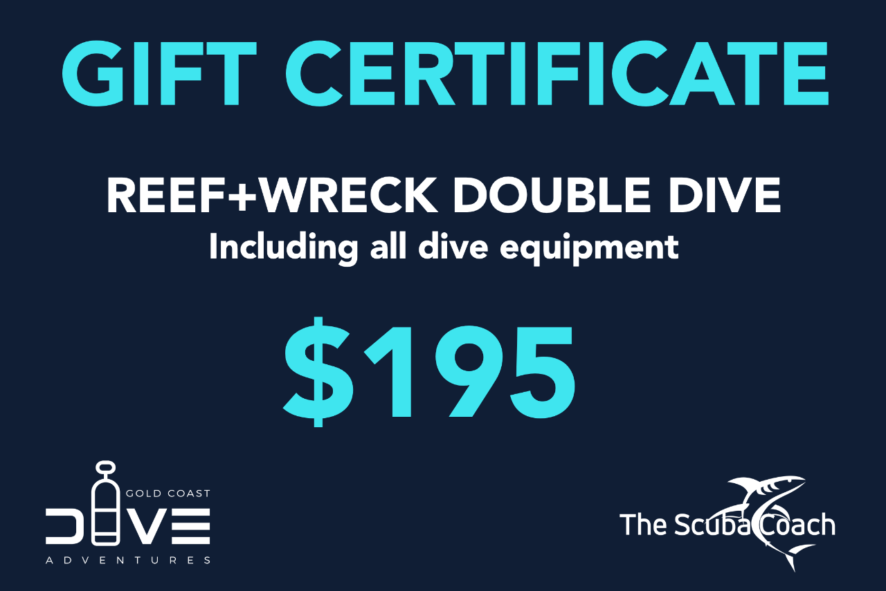 Gift Card for a Reef+Wreck Dive with full Gear Hire