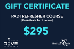Gift Card for a PADI Refresher Course (Reactivate)