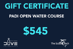 Gift Card for a PADI Open Water Course