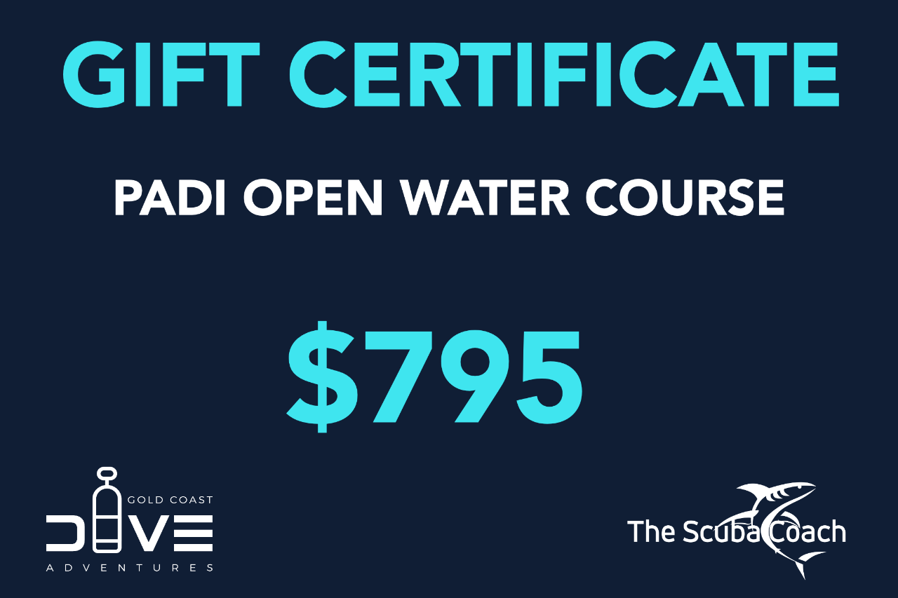 Gift Card for a PADI Open Water Diver+ Course