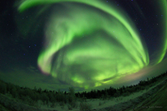 4 Days 3 Nights Yellowknife Winter Aurora Package Including Accommodation and Day Tours