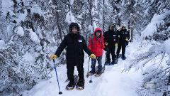 Staycation Snowshoeing On Great Slave Lake