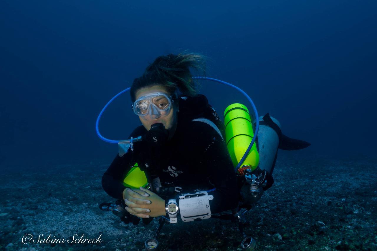 Tec Dive in Coiba National Park
