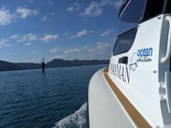 Hayman Island - Private Ocean Addiction Charter - Airport Transfer