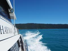 Airlie Beach - Private Ocean Enigma Half Day Charter - 4 Hour