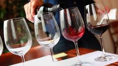 Winemaster Tasting