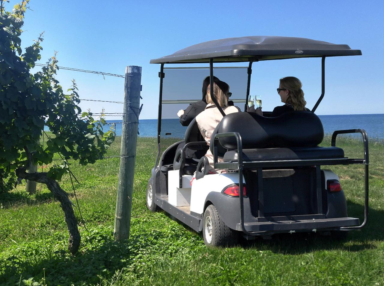 Vineyard Safari (Weekdays 3:00 pm)