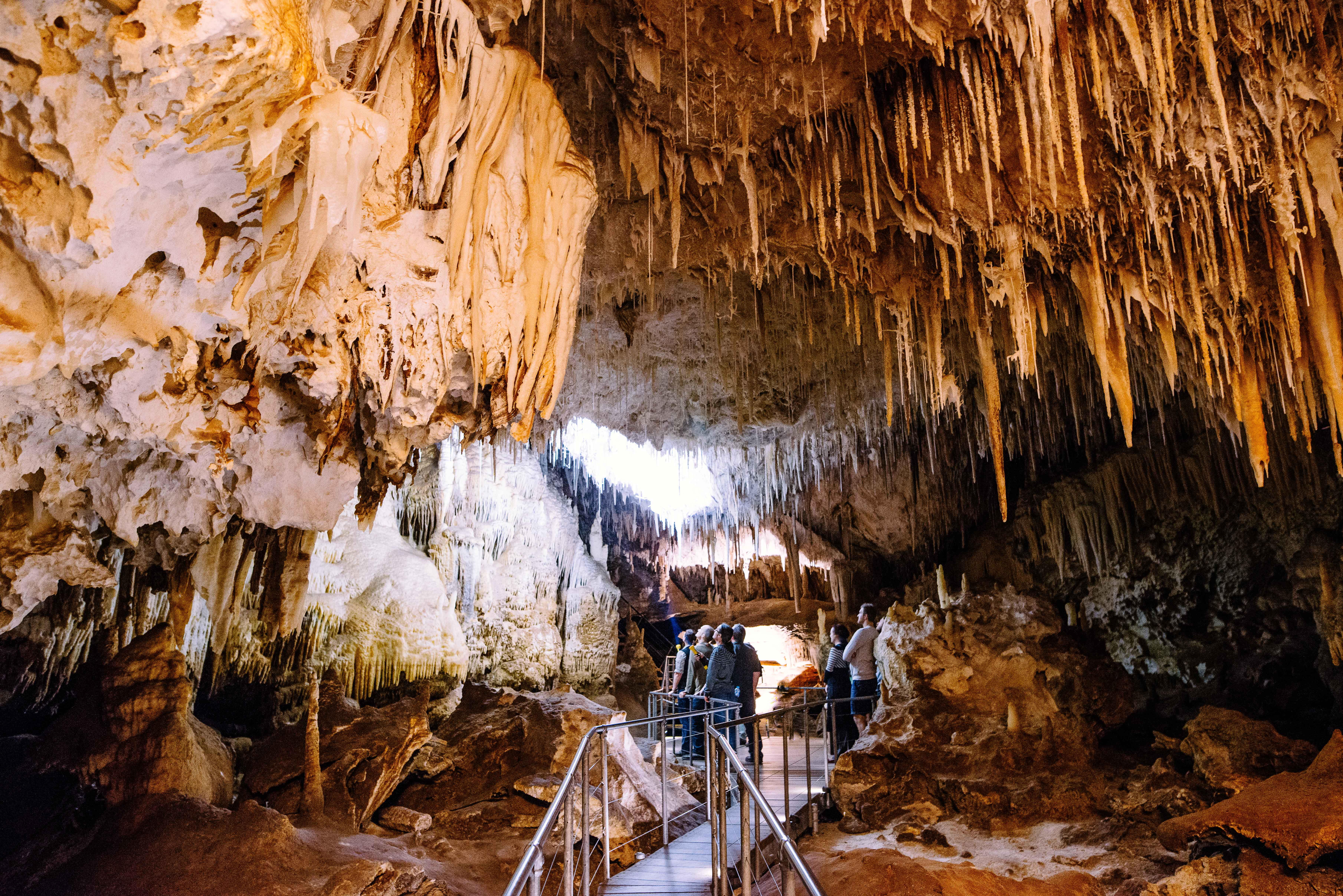 Jewel Cave Fully Guided Tour