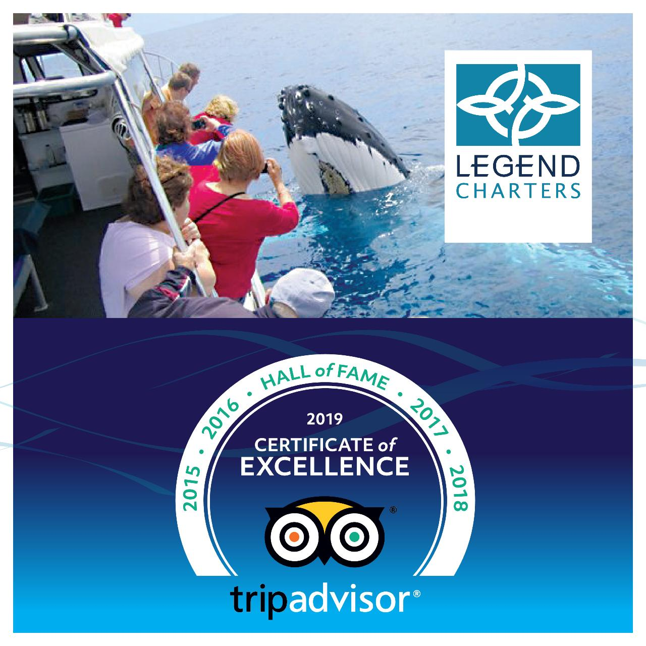 Busselton Whale Watching Eco Tours