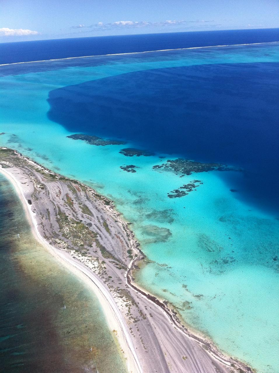 Shipwreck Special Nature Tour of the Abrolhos Islands
