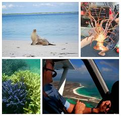 Abrolhos Islands Half Day Boat Charter