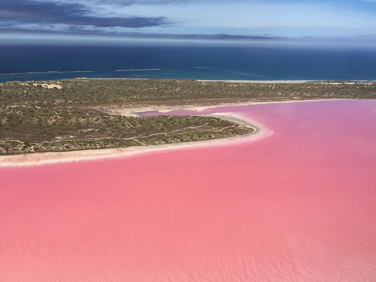 Pink Lake + Abrolhos Islands Scenic Flyover Tour
