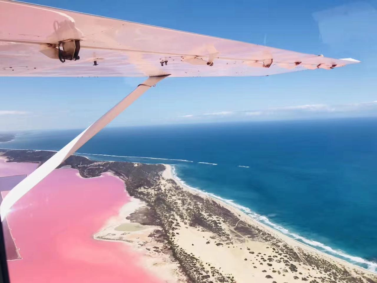 Pink Lake + Abrolhos Islands Nature Tour