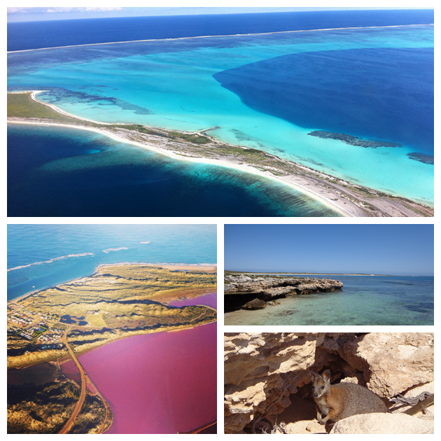 Pink Lake+Abrolhos Islands Full Day Tour