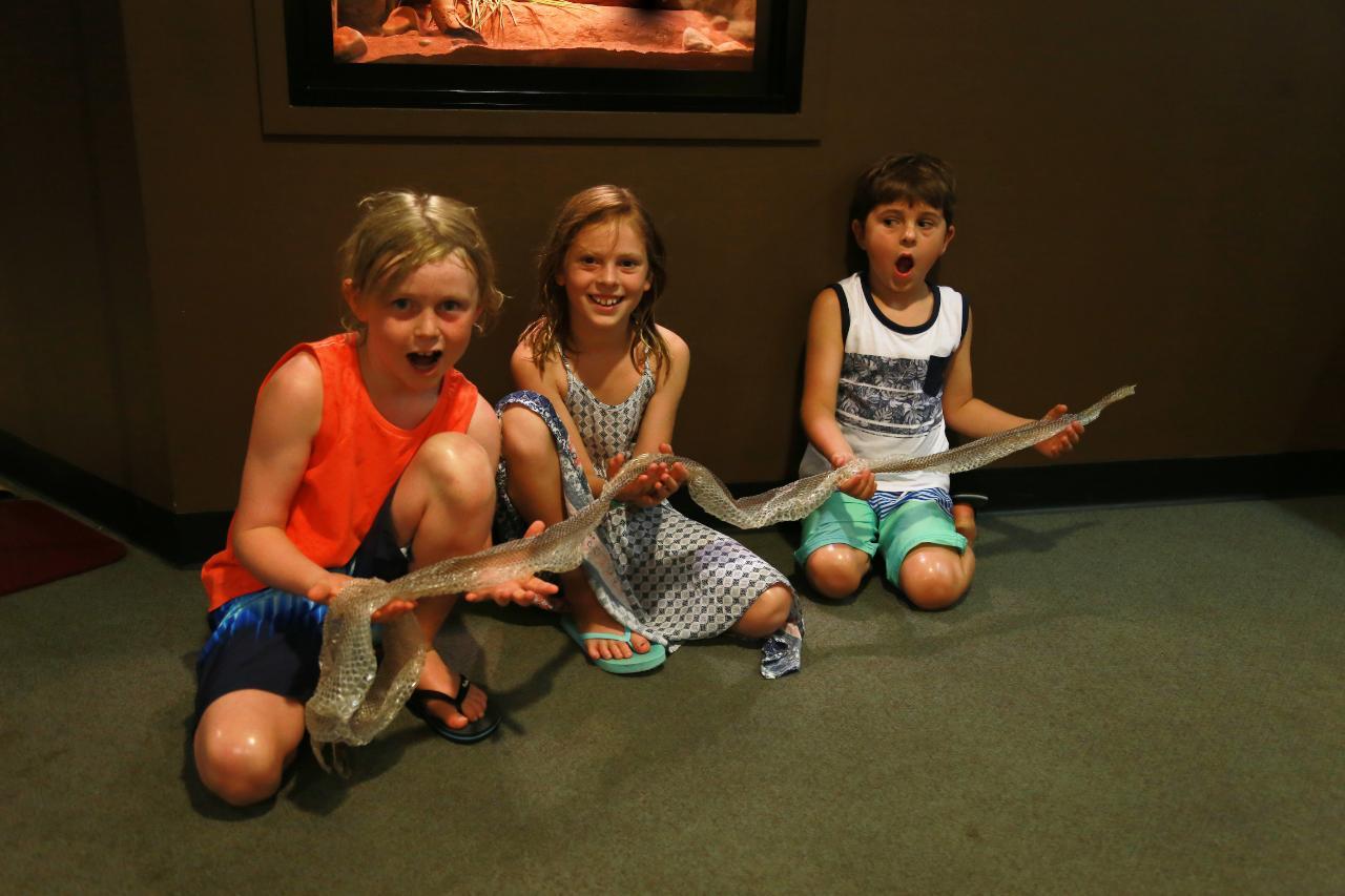 Junior Reptile Ranger Program