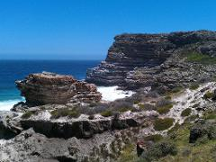 Cape Peninsula Full Day Private Tour