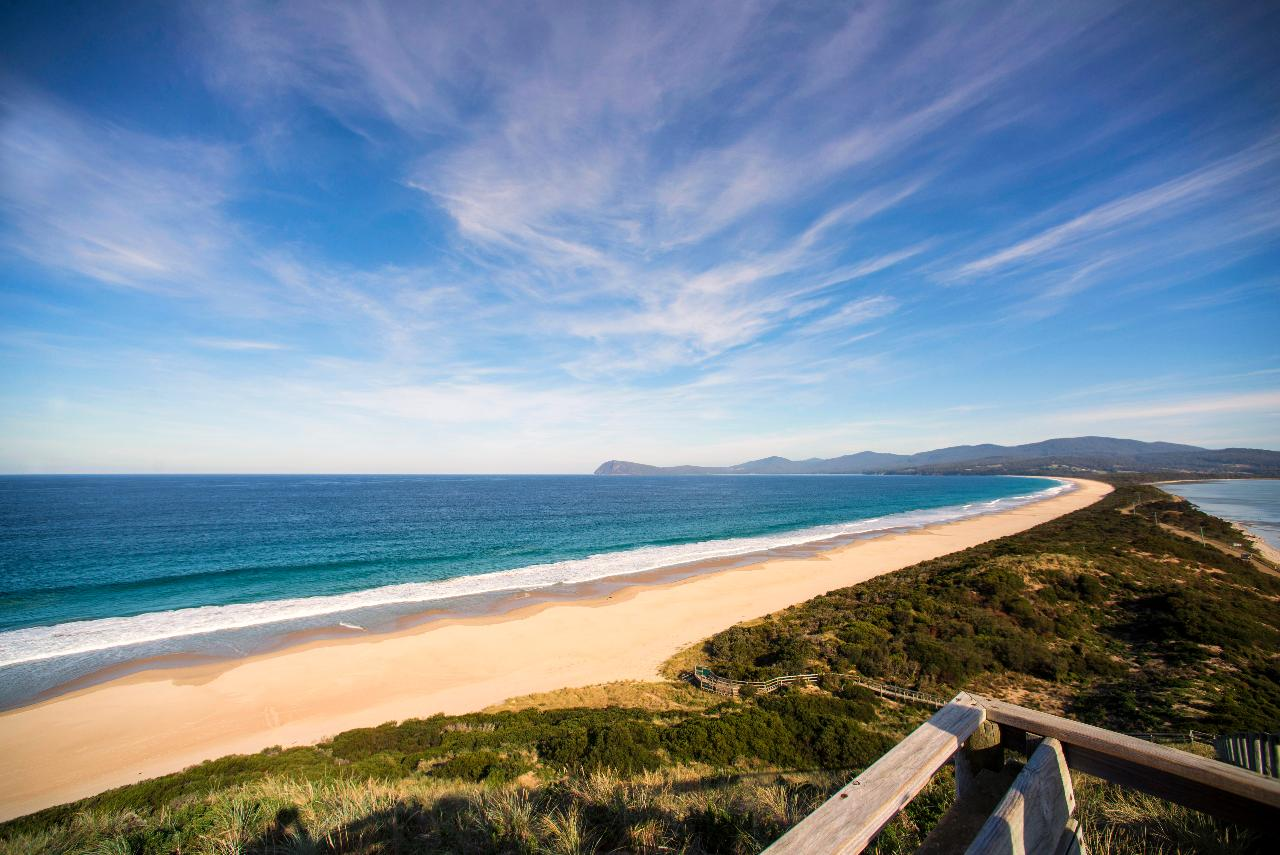 Private Bruny Island Nature Day Tour from Hobart 2 - 6 Passengers