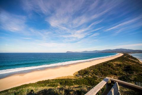 Private Bruny Island Nature Day Tour from Hobart 2 – 6 Passengers Tasmania Australia