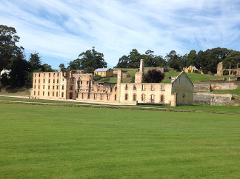 Private  Lavender Farm and Port Arthur Historic Site Day Tour from Hobart  4 - 7 Passengers Entry Fees Included