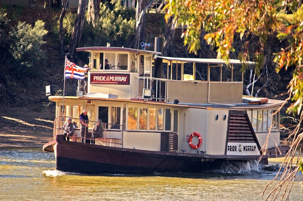 Pride of the Murray - 1.5 Hr Murray River Cruise