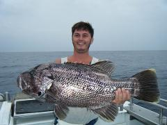 Deep Sea Fishing - Tight Lines Tuesday