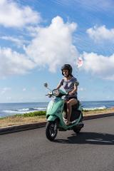 Standard Moped Rental-Car License Required