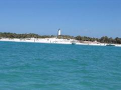 3 Hour Egmont Key Private Boat Dolphin Watching, Shelling, Swimming, Sightseeing, Island Adventure