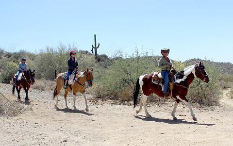 1.5 Hour Guided Horseback Ride