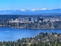 Private City of Seattle Tour for up to 6 passengers