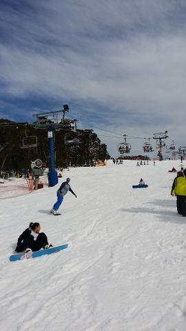 Mt Buller Day tour