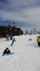 Mt Buller Day tour $135   (Wednesday madness only $88)