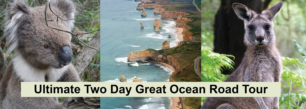 Ultimate 2 Day Great Ocean Road Tour $266