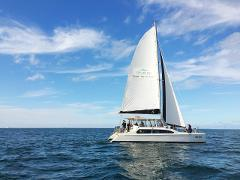 Enjoy the Afternoon Sailing on Port Phillip Bay