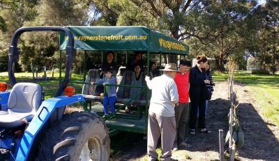 Rayner's Orchard Tour 3