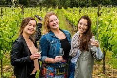 Martinborough and More Wine Tour