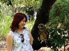 Territory Wildlife Park - 1 Day Tour