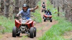 Trail Blazer Safari
