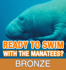 Bronze Tour - Add On Observer Only