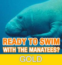 Gold Tour - Crystal River Manatee Tour