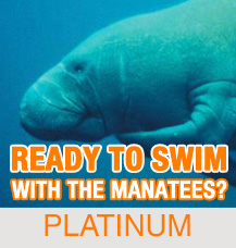 Platinum Tour – Capt. Mike's Ultimate Manatee Tour – Crystal River, Florida