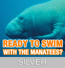 1PM SILVER TOUR – Crystal River Remarkable Manatee Tour