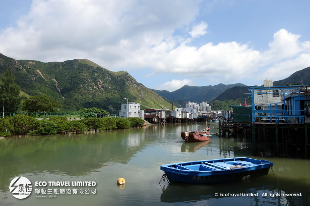A Glimpse of Traditional Tai O 大澳水鄉文化遊