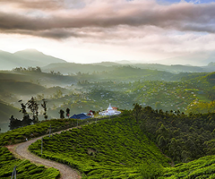 Sri Lanka Expedition - Custom Tour