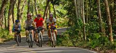 Chiang Mai Cycling Discovery