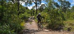 Wild Cambodia - Angkor & Beyond