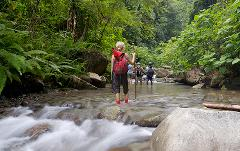 Selva Bananito Adventure Waterfall Tour with Rappel