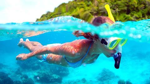 Snorkel Tour (Hotel Bocas del Toro)