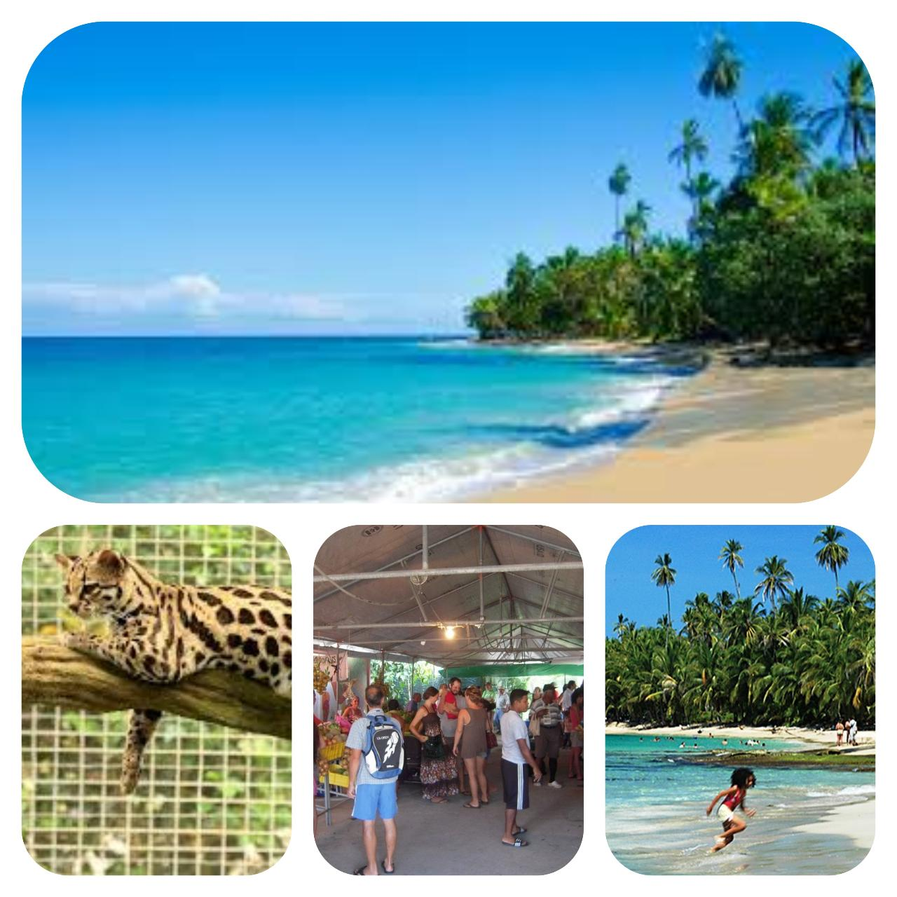 Saturday's Caribe Fun Full Day tour! - Casa Galim