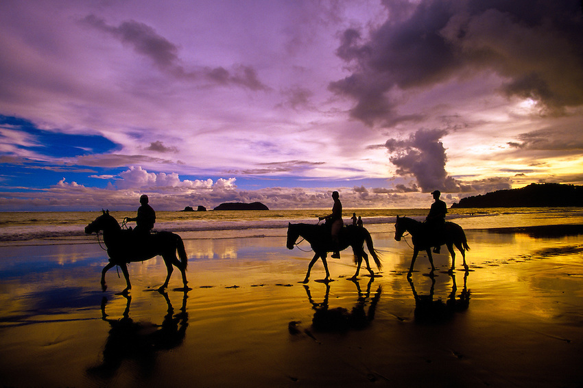 Horseback Riding - Two and half hour tour