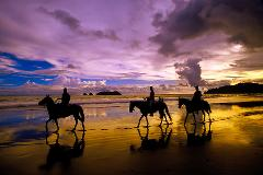 Horseback Riding - Two and half hour tour